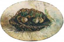 """Репродукция картины """"basket of sprouting bulbs"""" художника """"ван гог винсент"""""""