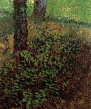 "Картина ""undergrowth"" художника ""ван гог винсент"""