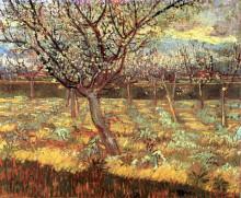 "Копия картины ""apricot trees in blossom"" художника ""ван гог винсент"""
