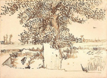 "Репродукция картины ""landscape with a tree in the foreground"" художника ""ван гог винсент"""