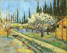 "Репродукция картины ""orchard in blossom, bordered by cypresses"" художника ""ван гог винсент"""