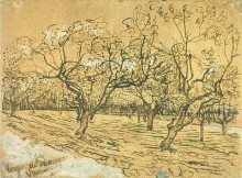 "Репродукция картины ""Orchard with Blossoming Plum Trees (The White Orchard)"" художника ""Ван Гог Винсент"""
