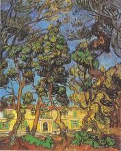 "Репродукция картины ""trees in the garden of the hospital saint-paul"" художника ""ван гог винсент"""