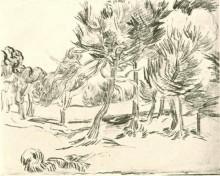 "Копия картины ""a group of pine trees"" художника ""ван гог винсент"""
