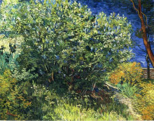 "Копия картины ""lilac bush"" художника ""ван гог винсент"""