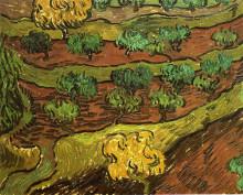 """Репродукция картины """"olive trees against a slope of a hill"""" художника """"ван гог винсент"""""""