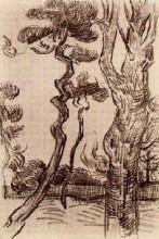 "Репродукция картины ""Pine Trees Seen against the Wall of the Asylum"" художника ""Ван Гог Винсент"""
