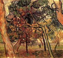 """Репродукция картины """"Study of Pine Trees"""" художника """"Ван Гог Винсент"""""""