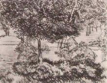 """Репродукция картины """"Trees and Shrubs"""" художника """"Ван Гог Винсент"""""""