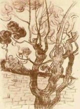 "Репродукция картины ""Treetop Seen against the Wall of the Asylum"" художника ""Ван Гог Винсент"""