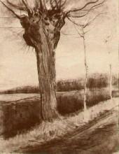 """Картина """"pollard willow"""" художника """"ван гог винсент"""""""