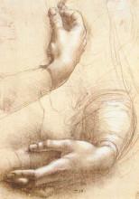 """Репродукция картины """"Study of hands"""" художника """"да Винчи Леонардо"""""""