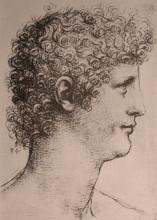 "Репродукция картины ""Drawing of Salai"" художника ""да Винчи Леонардо"""