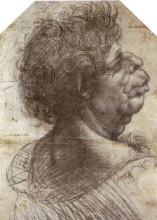 """Копия картины """"A Grotesque Head Grotesque head"""" художника """"да Винчи Леонардо"""""""