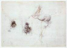 """Репродукция картины """"Studies of Leda and a horse"""" художника """"да Винчи Леонардо"""""""