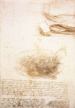 "Картина ""Studies of water"" художника ""да Винчи Леонардо"""