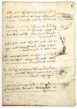 """Репродукция картины """"Codex on the flight of birds"""" художника """"да Винчи Леонардо"""""""