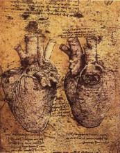 """Картина """"Heart and its Blood Vessels"""" художника """"да Винчи Леонардо"""""""