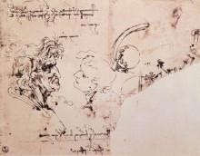 "Картина ""Study sheet"" художника ""да Винчи Леонардо"""