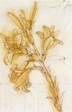 """Копия картины """"lily"""" художника """"да винчи леонардо"""""""
