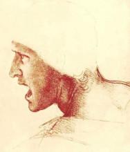 "Картина ""Study of a Figure for the Battle of Anghiari"" художника ""да Винчи Леонардо"""