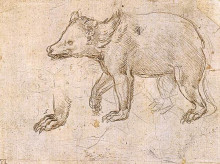 """Картина """"Studies of a BeWalking"""" художника """"да Винчи Леонардо"""""""