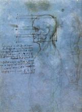 """Репродукция картины """"study of proportion"""" художника """"да винчи леонардо"""""""
