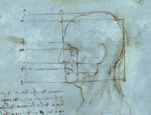 "Копия картины ""The proportions of the head"" художника ""да Винчи Леонардо"""