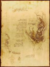 "Репродукция картины ""coition of a hemisected man and woman"" художника ""да винчи леонардо"""