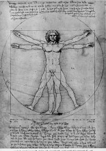 "Репродукция картины ""the proportions of the human figure (the vitruvian man)"" художника ""да винчи леонардо"""