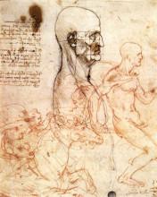 """Копия картины """"profile of a man and study of two riders"""" художника """"да винчи леонардо"""""""
