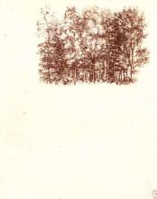 "Копия картины ""Birch copse"" художника ""да Винчи Леонардо"""