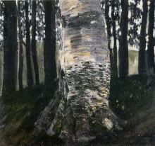 """Репродукция картины """"birch in a forest"""" художника """"климт густав"""""""