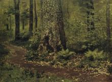 """Картина """"Тропинка в лиственном лесу. Папоротники."""" художника """"Левитан Исаак"""""""