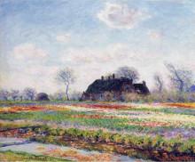 """Картина """"тюльпанные поля в сассенхайме, близ лейдена"""" художника """"моне клод"""""""