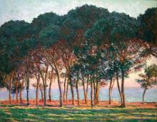 """Картина """"под сосновыми деревьями. конец дня"""" художника """"моне клод"""""""