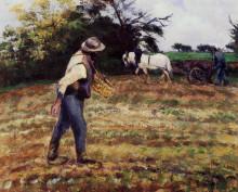 "Копия картины ""The Sower, Montfoucault"" художника ""Писсарро Камиль"""