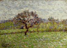 "Копия картины ""An Apple Tree at Eragny"" художника ""Писсарро Камиль"""