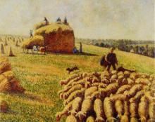 """Картина """"flock of sheep in a field after the harvest"""" художника """"писсарро камиль"""""""