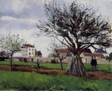 """Картина """"apple trees at pontoise"""" художника """"писсарро камиль"""""""