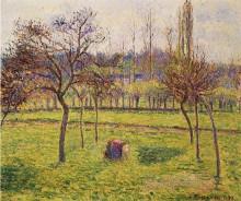 "Репродукция картины ""Apple Trees in a Field"" художника ""Писсарро Камиль"""