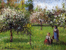 "Картина ""Apple Blossoms, Eragny"" художника ""Писсарро Камиль"""